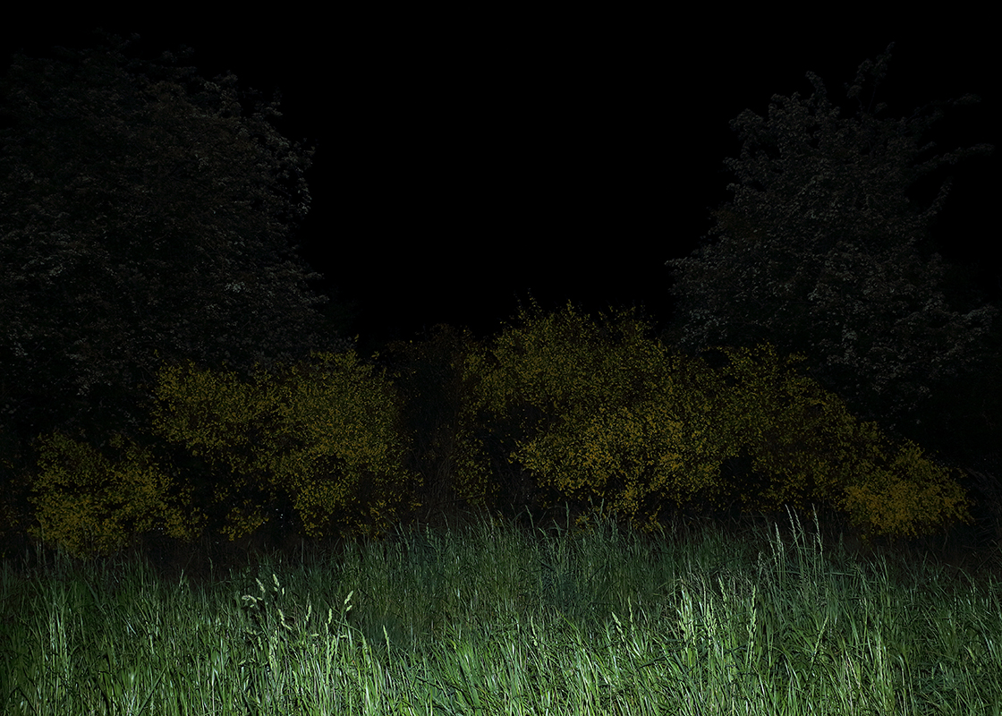 http://frederickcarnet.com/files/gimgs/164_whenthenightfalls011.jpg