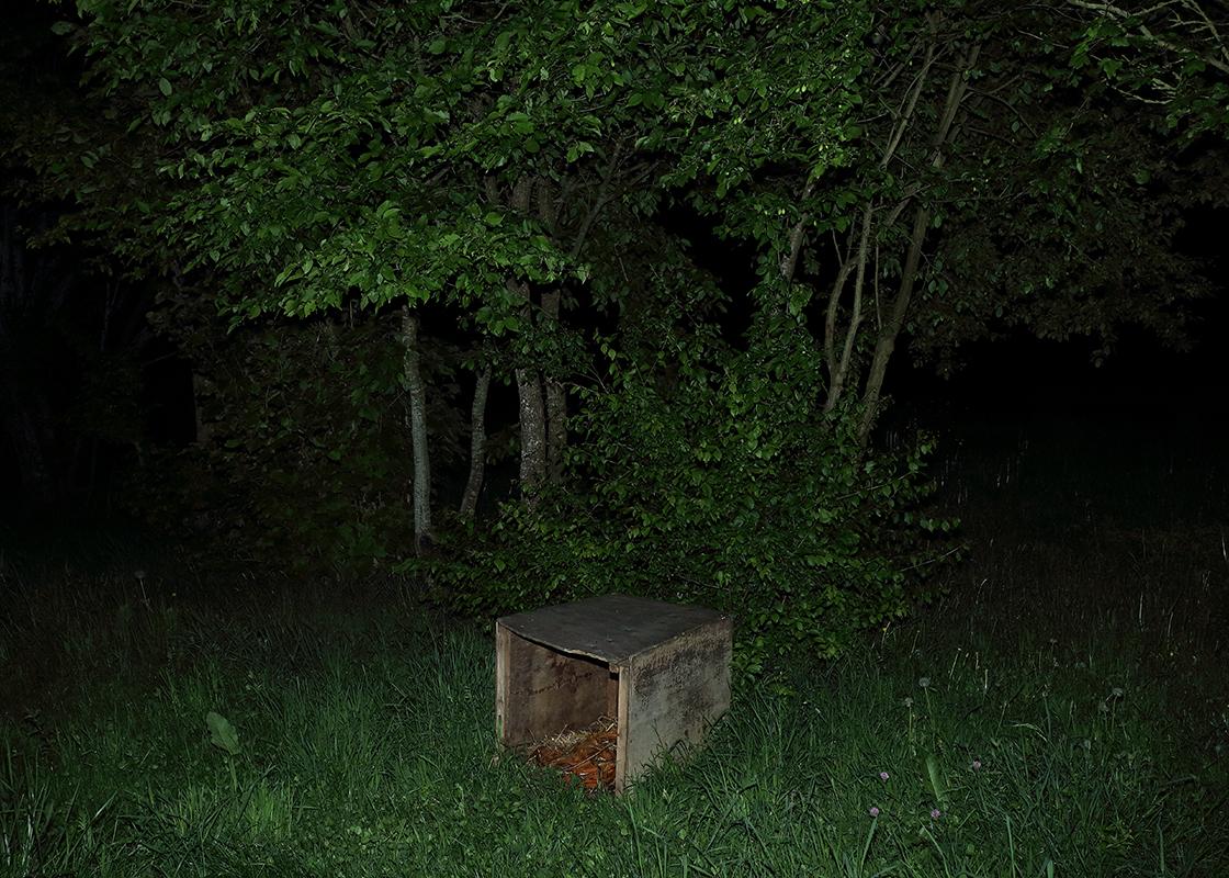 http://frederickcarnet.com/files/gimgs/164_whenthenightfalls227.jpg