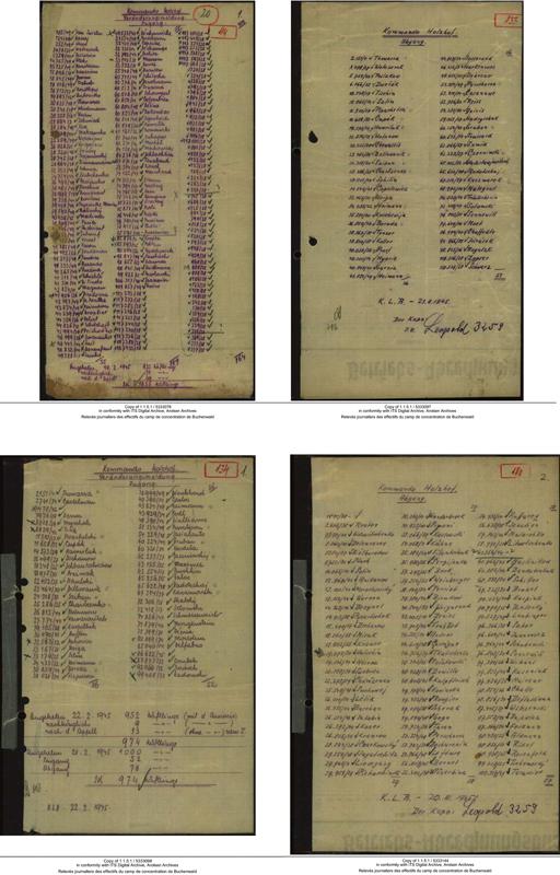 http://frederickcarnet.com/files/gimgs/234_dokumentetd7010204-56-copie.jpg